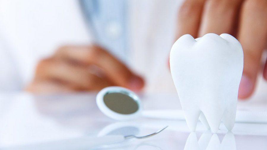 Prophylaxe und Parodontalbehandlung